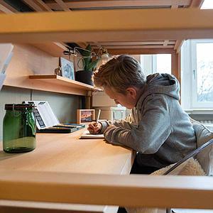 Escritorio cama alta DESTYLE de Breuyn haya aceitada